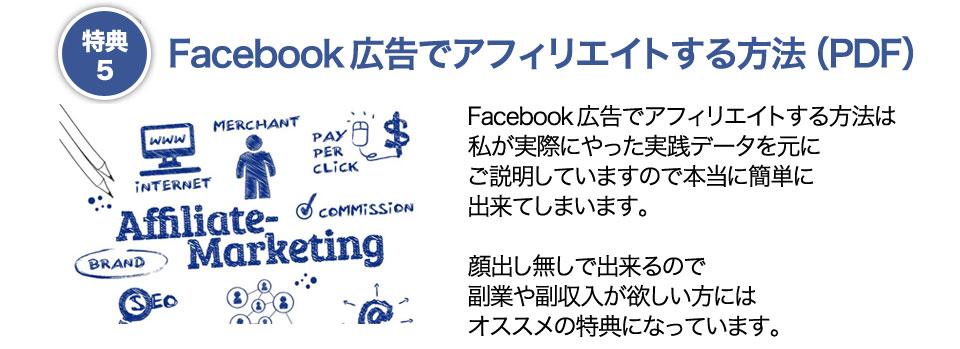 特典5 Facebook広告でアフィリエイトする方法(PDF)